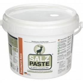 Anise flavor salt paste 2kg