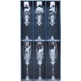 Champagne Glass Set (6 pcs.)